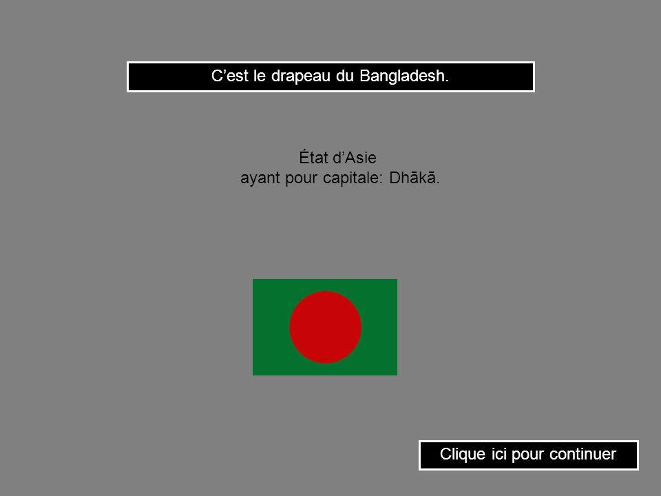 C'est le drapeau du Bangladesh.