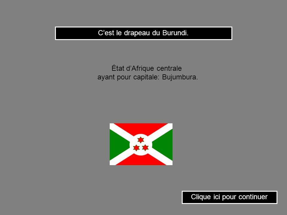 C'est le drapeau du Burundi.