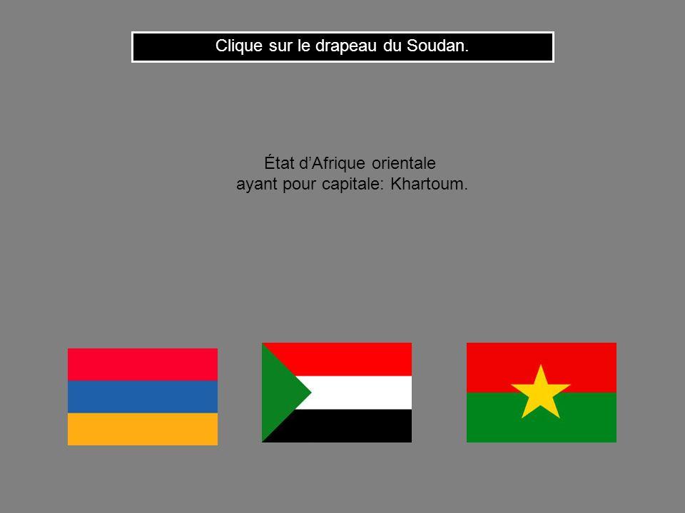 Clique sur le drapeau du Soudan.