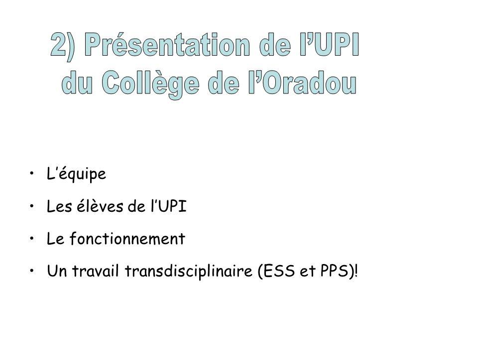 2) Présentation de l'UPI