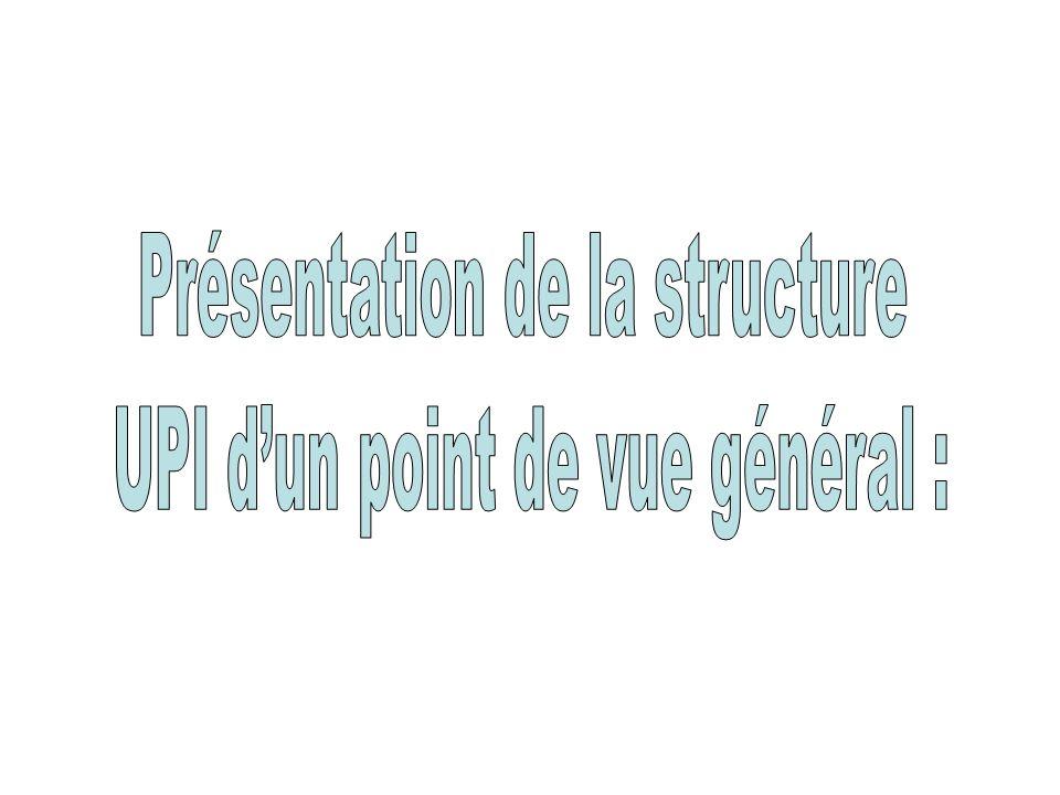 Présentation de la structure UPI d'un point de vue général :