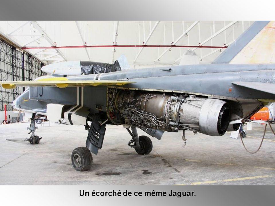 Un écorché de ce même Jaguar.