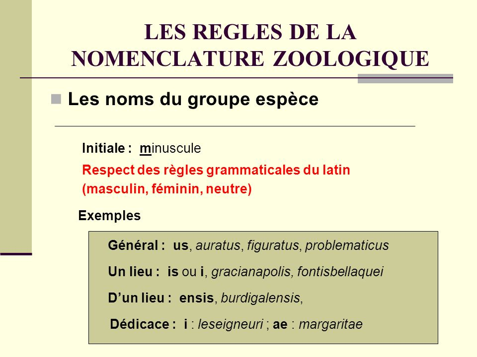LES REGLES DE LA NOMENCLATURE ZOOLOGIQUE