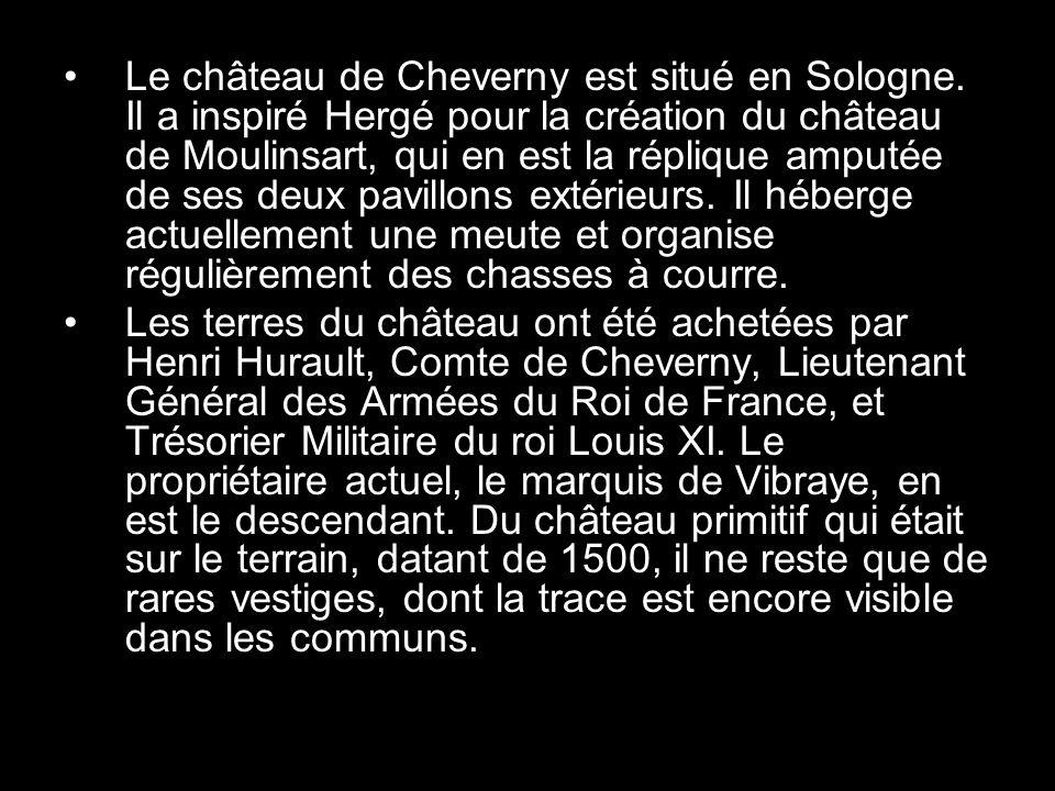 Le château de Cheverny est situé en Sologne