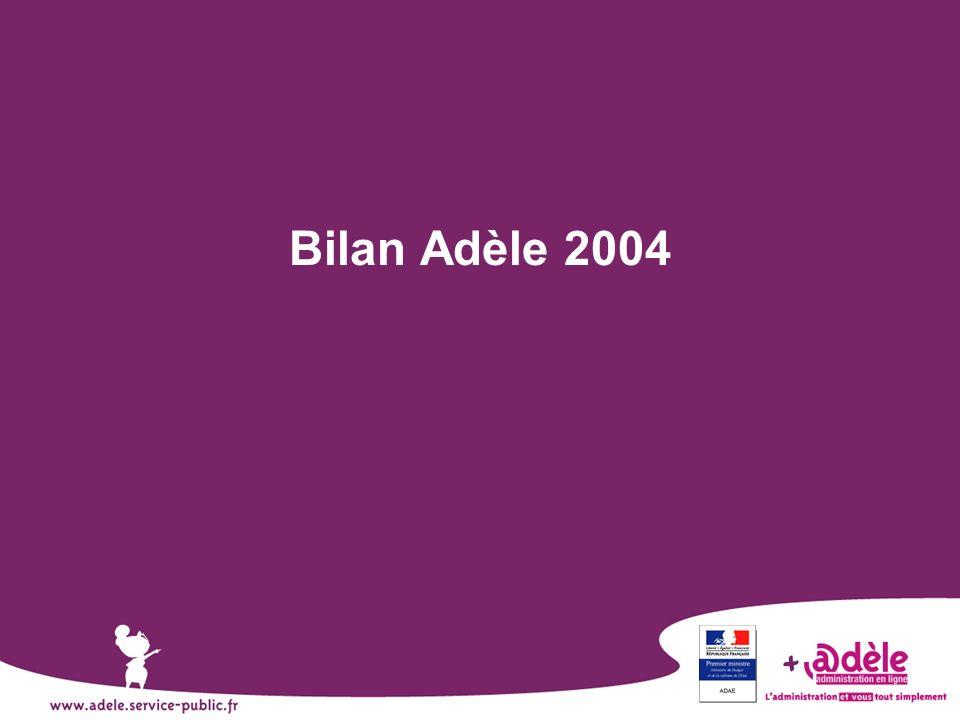Bilan Adèle 2004 Diapo faisant office de fond de scène