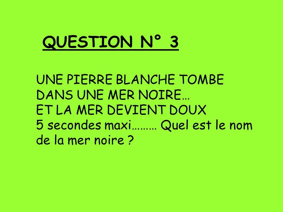 QUESTION N° 3 UNE PIERRE BLANCHE TOMBE DANS UNE MER NOIRE…