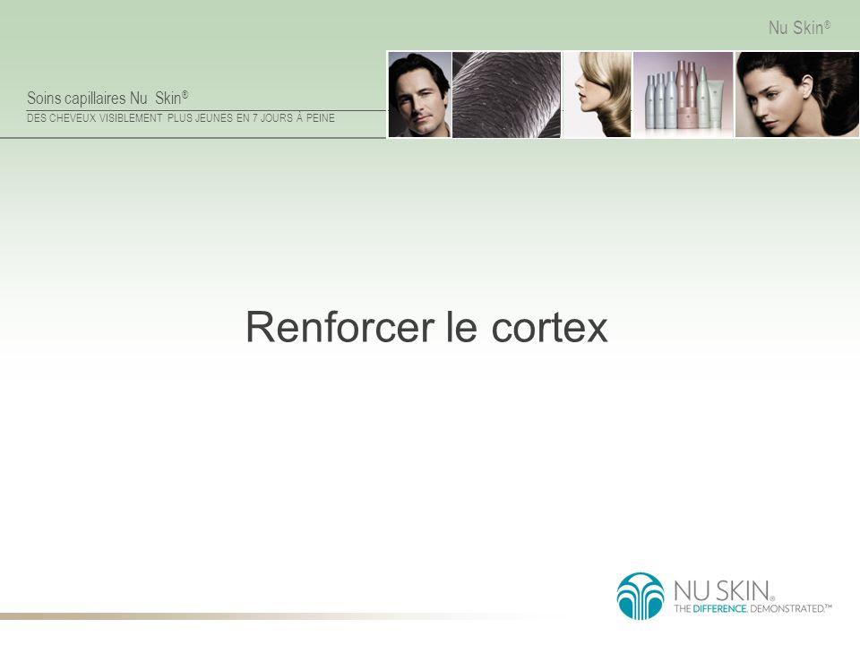 Renforcer le cortex