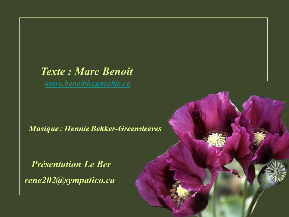 Texte : Marc Benoit Présentation Le Ber rene202@sympatico.ca