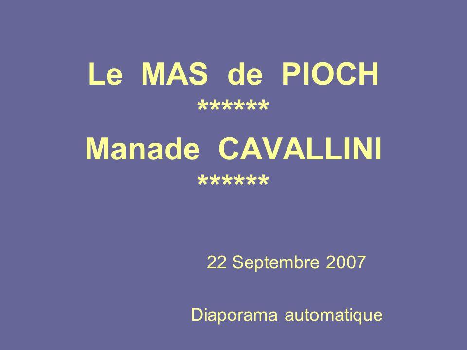Le MAS de PIOCH ****** Manade CAVALLINI ******