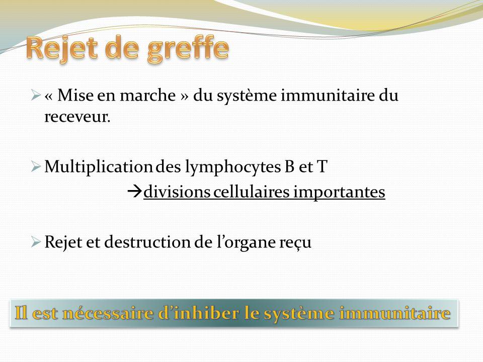 Rejet de greffe Il est nécessaire d'inhiber le système immunitaire