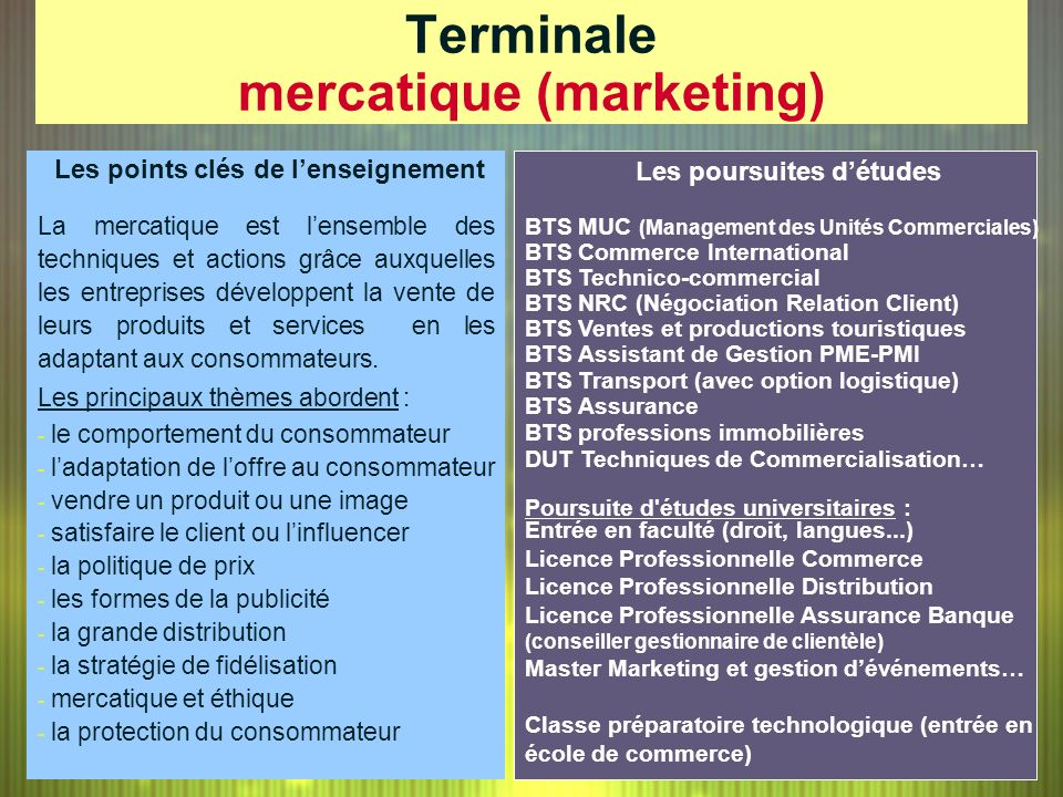 Terminale mercatique (marketing)