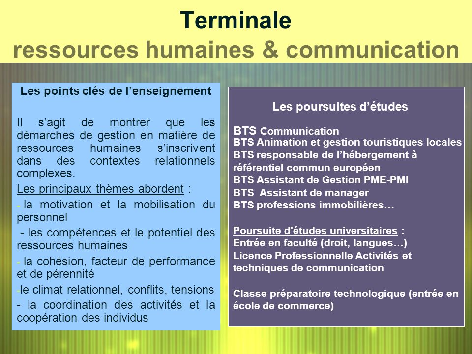 Terminale ressources humaines & communication