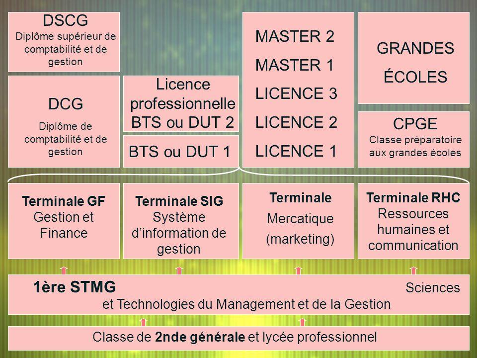 DSCG Diplôme supérieur de comptabilité et de gestion MASTER 2 MASTER 1