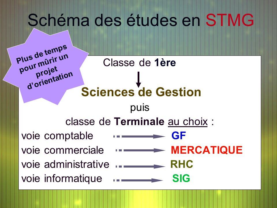 Schéma des études en STMG