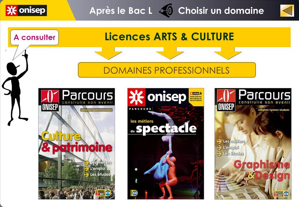 Licences ARTS & CULTURE