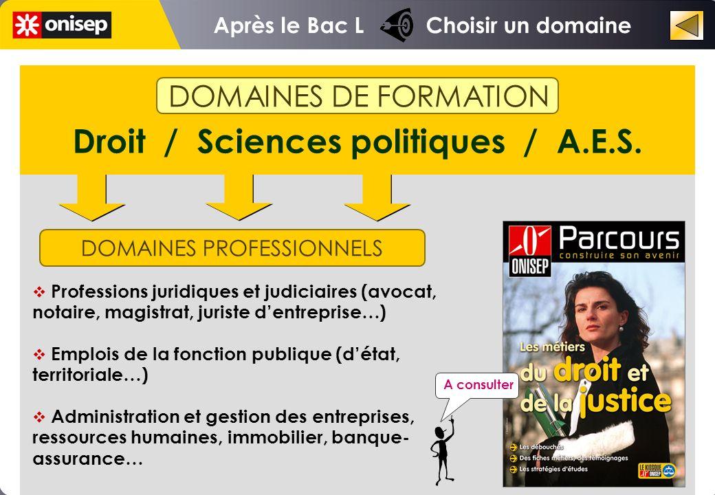 Droit / Sciences politiques / A.E.S.