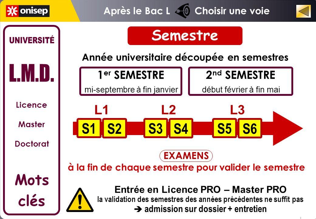 Semestre UNIVERSITÉ L.M.D. S1 S2 S3 S4 S5 S6 Mots clés L1 L2 L3