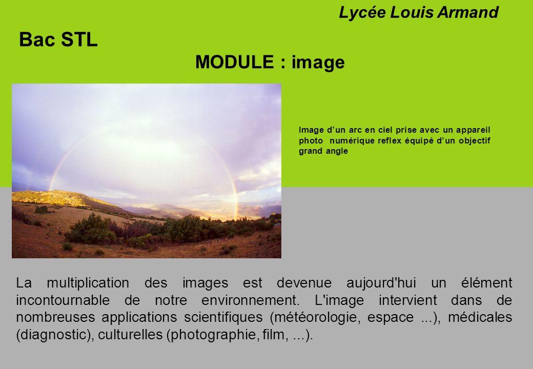 Bac STL MODULE : image Lycée Louis Armand