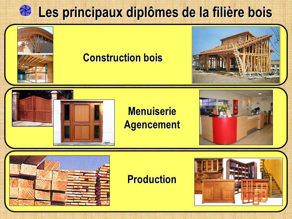 Les principaux diplômes de la filière bois