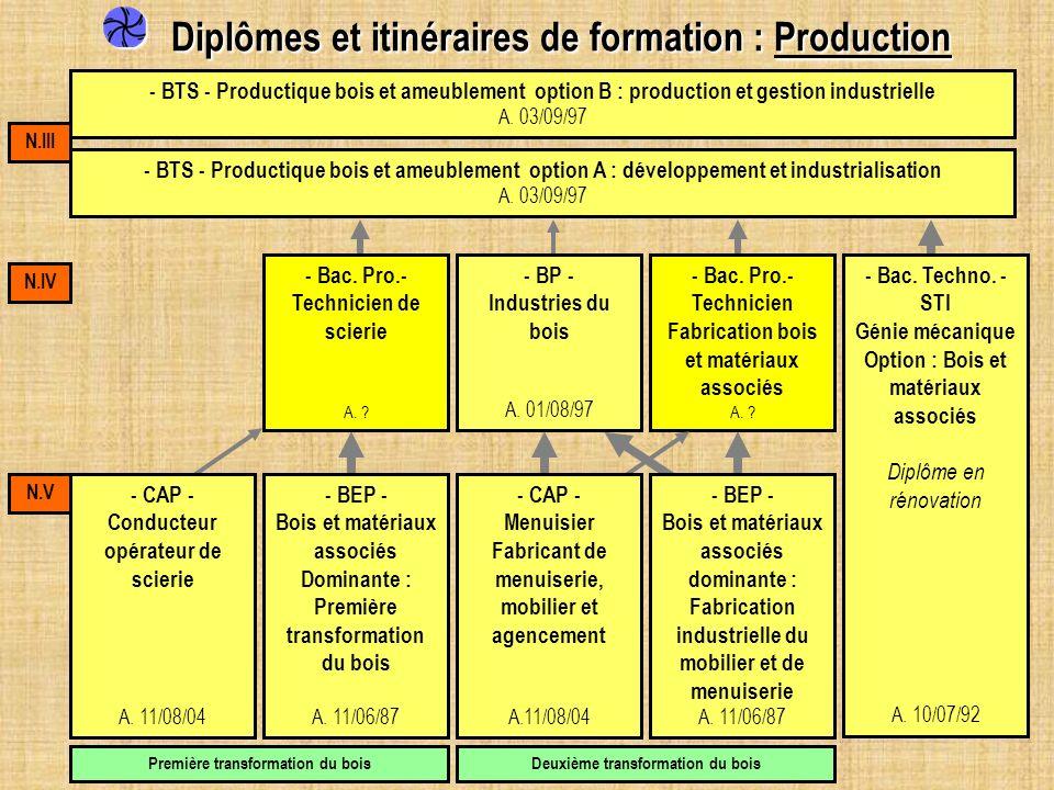 Diplômes et itinéraires de formation : Production