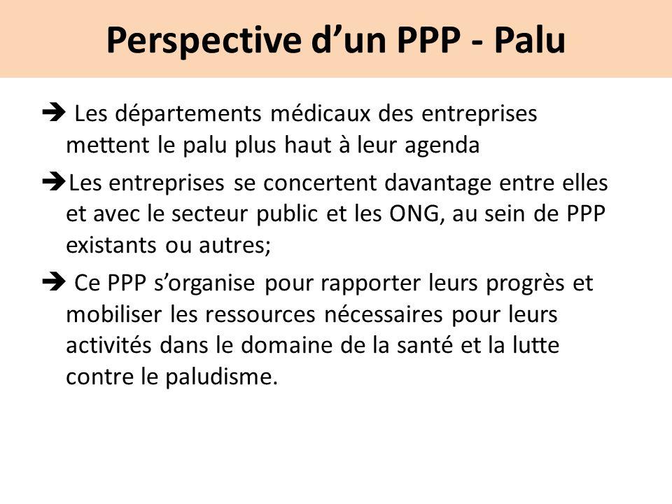 Perspective d'un PPP - Palu