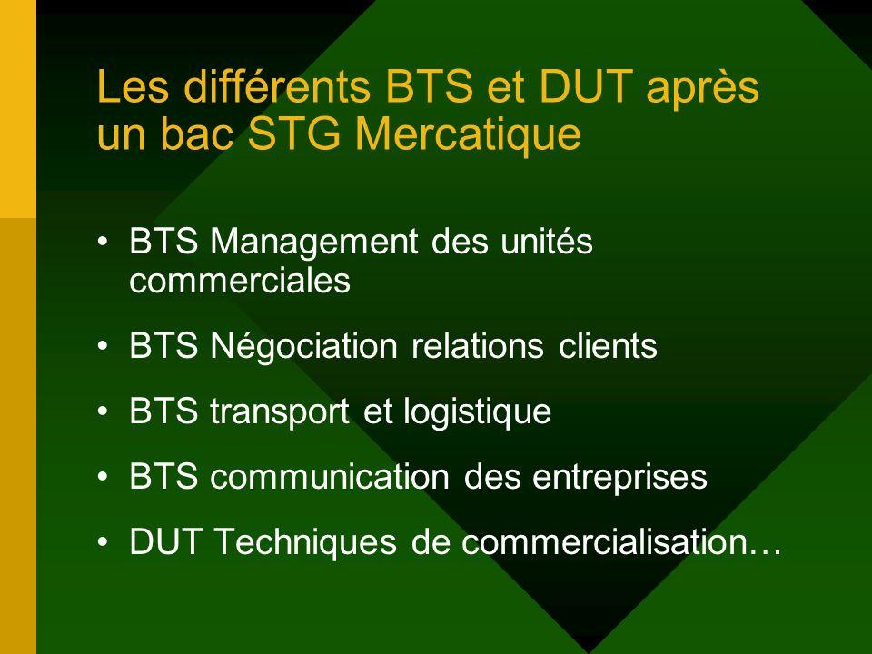 Les différents BTS et DUT après un bac STG Mercatique