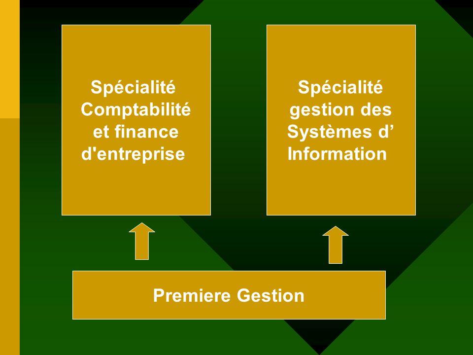Spécialité Comptabilité. et finance. d entreprise. Spécialité. gestion des. Systèmes d' Information.