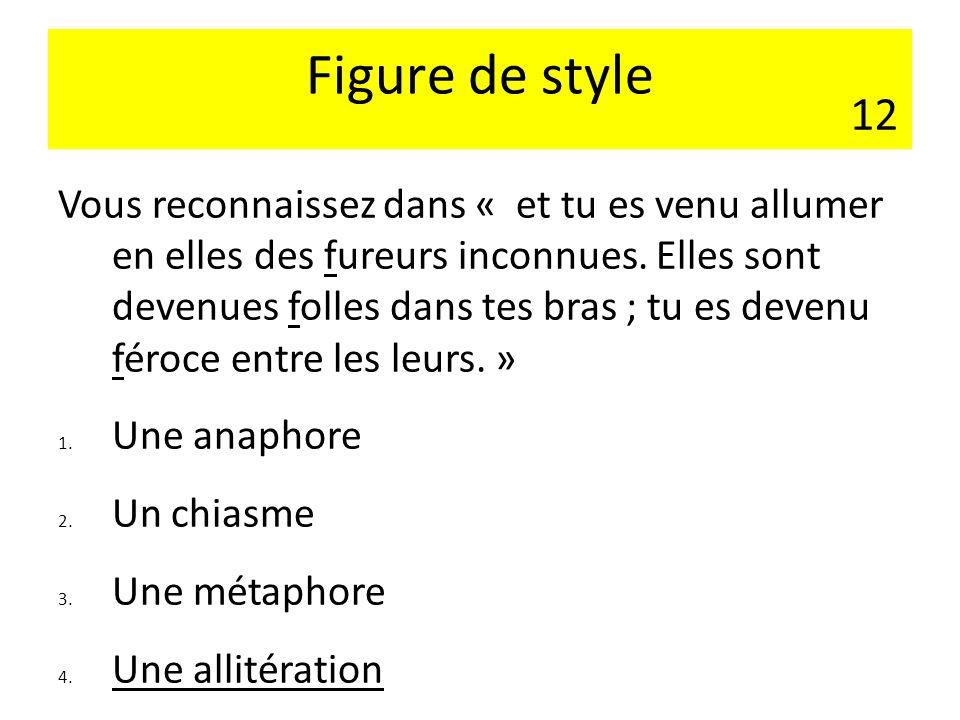 Figure de style 12.