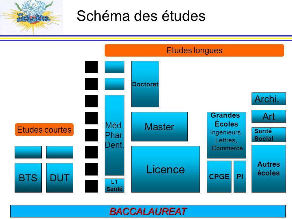 Schéma des études Licence 8 7 Archi. 6 Art 5 Master 4 3 BTS DUT 2 1