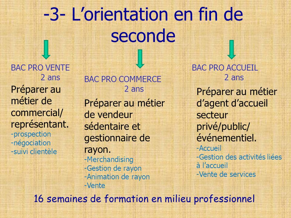 -3- L'orientation en fin de seconde
