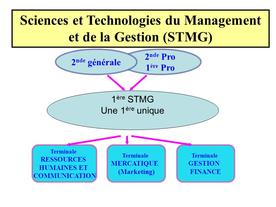 Sciences et Technologies du Management et de la Gestion (STMG)
