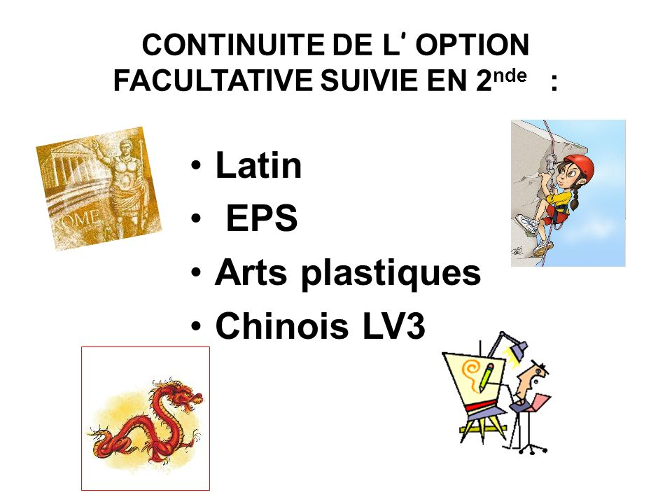 CONTINUITE DE L' OPTION FACULTATIVE SUIVIE EN 2nde :