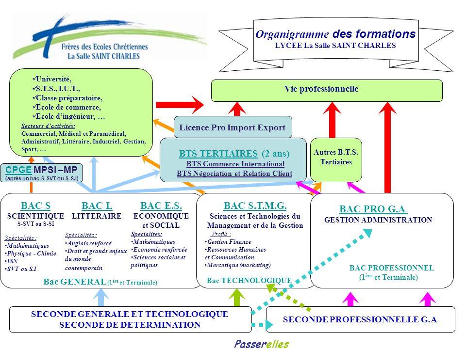 Organigramme des formations