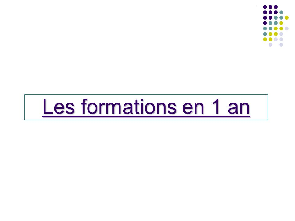 Les formations en 1 an