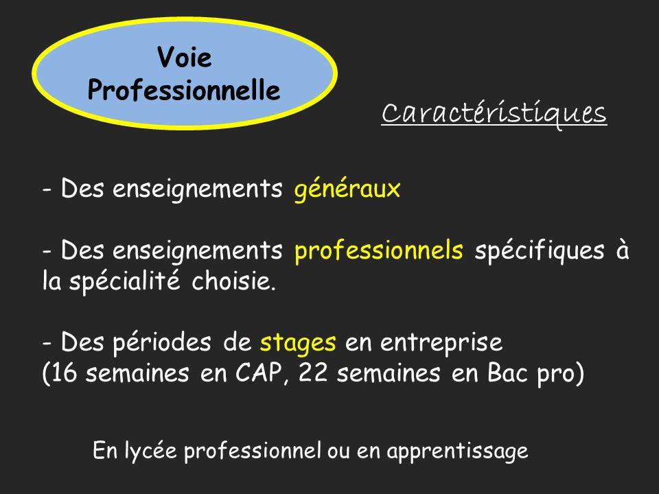Caractéristiques Voie Professionnelle - Des enseignements généraux