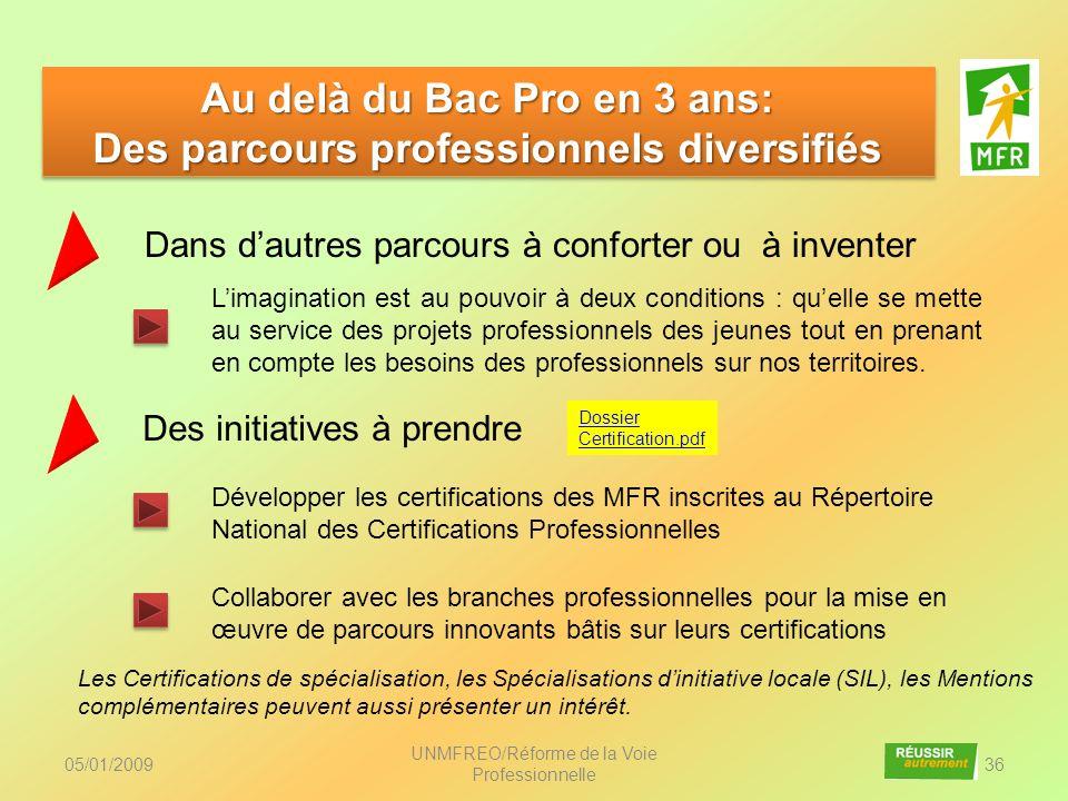 Au delà du Bac Pro en 3 ans: Des parcours professionnels diversifiés