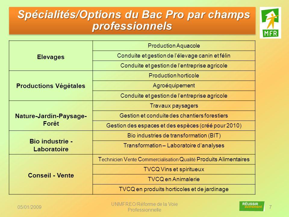 Spécialités/Options du Bac Pro par champs professionnels