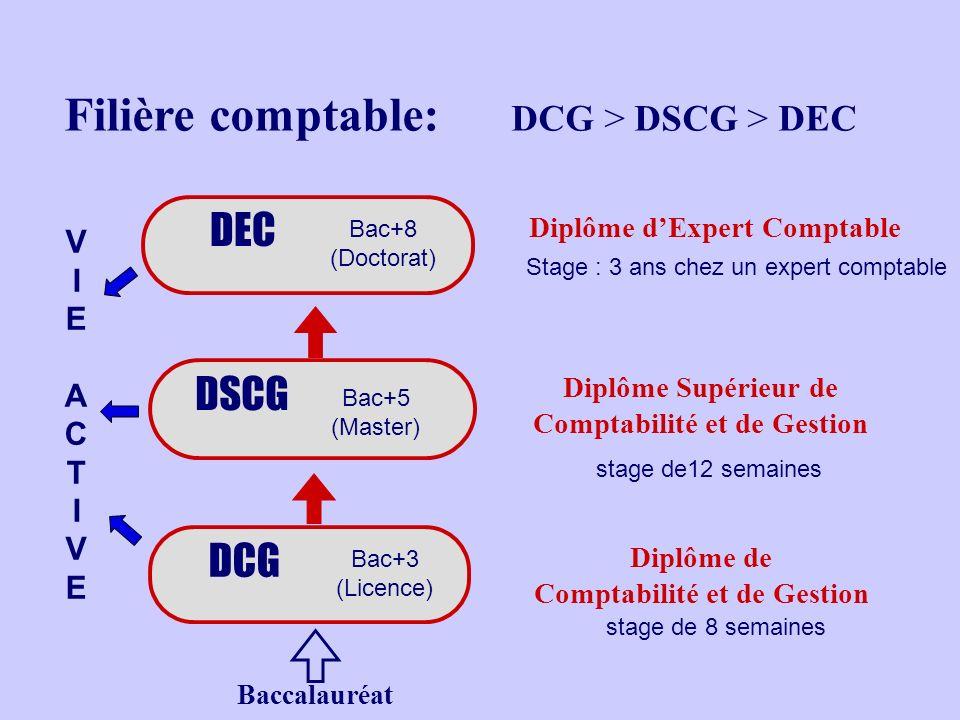 Filière comptable: DCG > DSCG > DEC