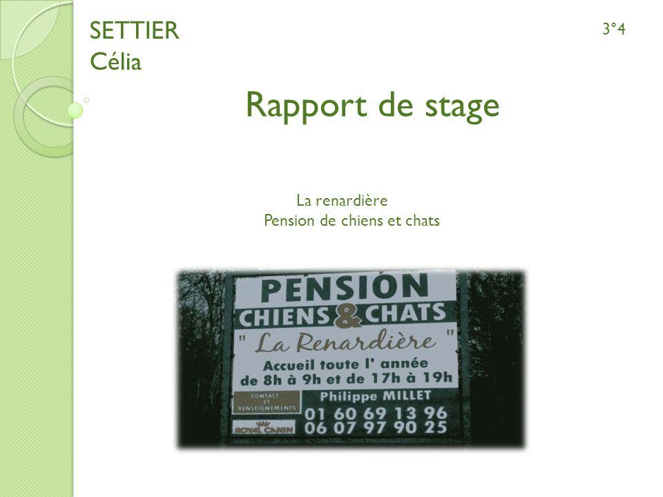 Rapport de stage SETTIER Célia 3°4