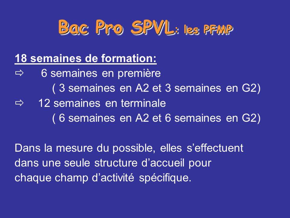 Bac Pro SPVL: les PFMP 18 semaines de formation: