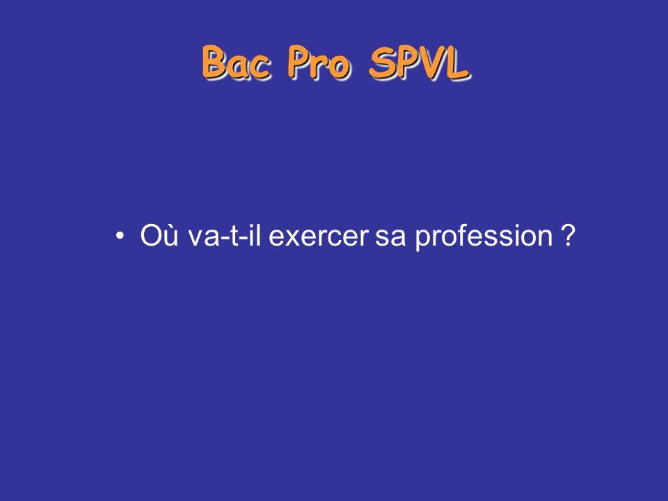 Bac Pro SPVL Où va-t-il exercer sa profession