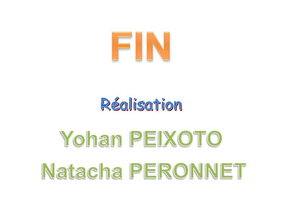 FIN Réalisation Yohan PEIXOTO Natacha PERONNET