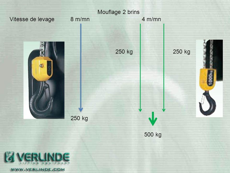 Mouflage 2 brins Vitesse de levage 8 m/mn 4 m/mn 250 kg 250 kg 250 kg 500 kg