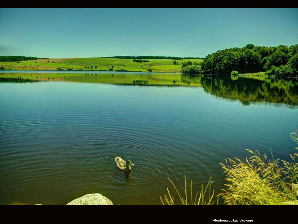 Alentours du Lac Sauvage