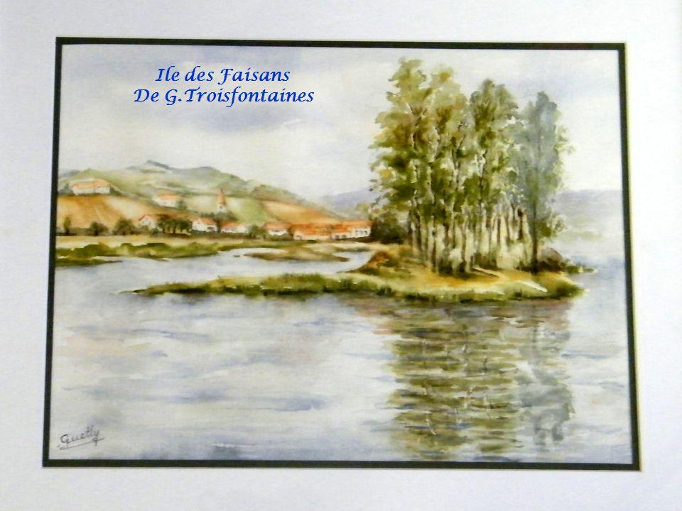Ile des Faisans De G.Troisfontaines