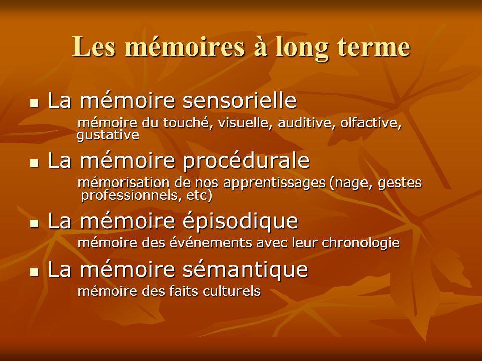 Les mémoires à long terme