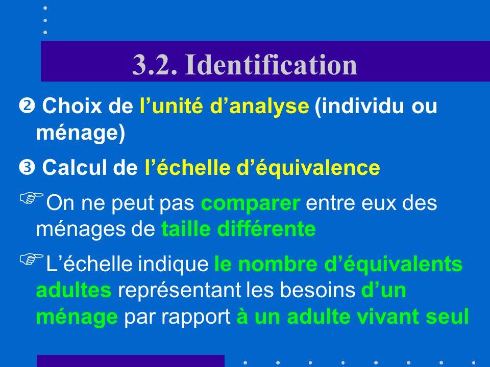 3.2. Identification Choix de l'unité d'analyse (individu ou ménage)