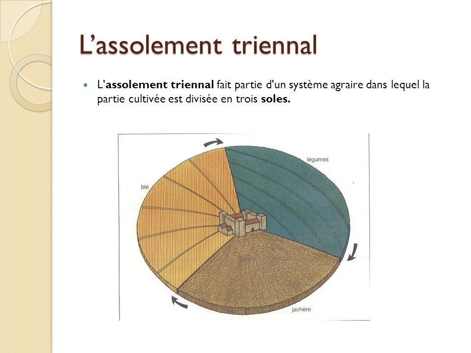 L'assolement triennal