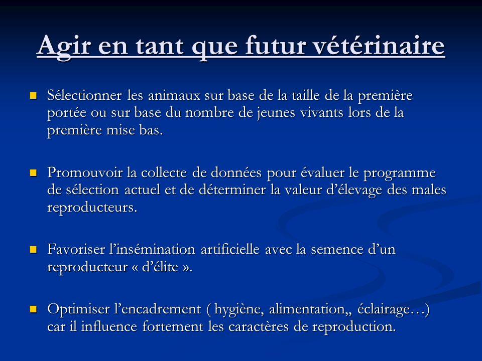 Agir en tant que futur vétérinaire