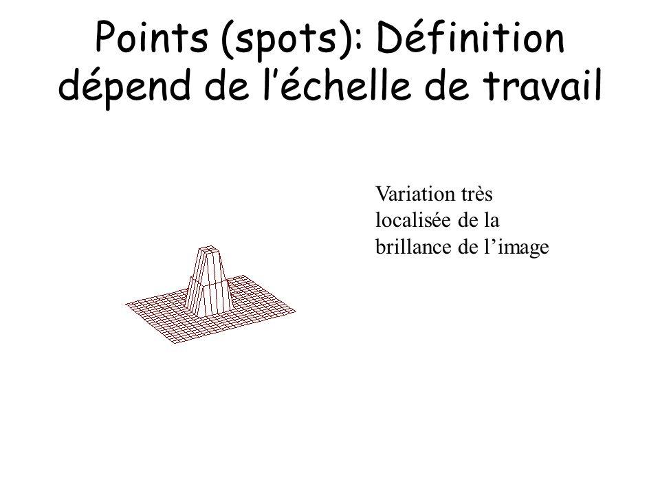 Points (spots): Définition dépend de l'échelle de travail